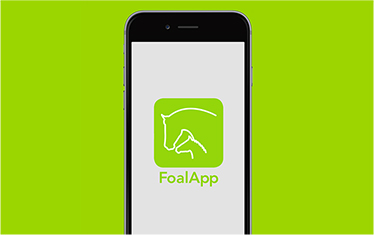 FOAL APP LAUNCH